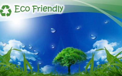 Eco-Friendly Kitchen Flooring